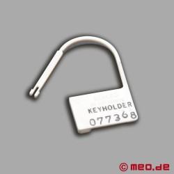 Serial Numbered Locks