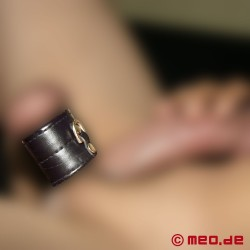 Double Thick Ball Stretcher with D-Ring