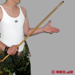 Bamboo Cane punitif