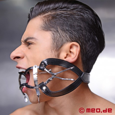 Whitehead Ratchet Mouth Gag Steel