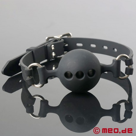 Ball Gag Wet & Naughty