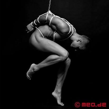 Anneau de bondage en suspension Shibari