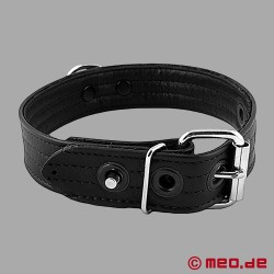 Leather puppy collar - San Francisco series