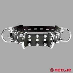 Leather dog collar with spikes - Alpha dog