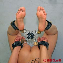 Lien Hog Tie à anneaux en D avec cadenas à minuterie