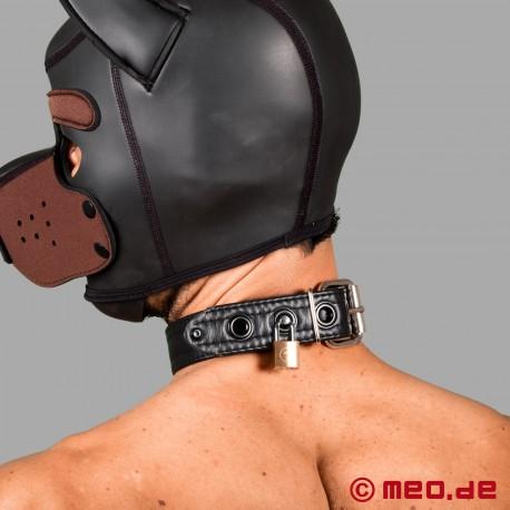 Puppy Halsband aus Leder - San Francisco Serie