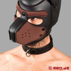 Collier de chien en cuir - Série San Francisco