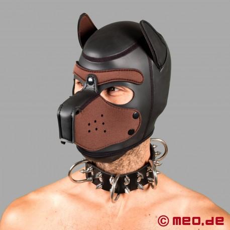 Hundehalsband aus Leder mit Spikes – Alpharüde