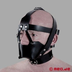 Lockable Head Harness