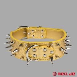 Goldenes Stachelhalsband für den Human Pup