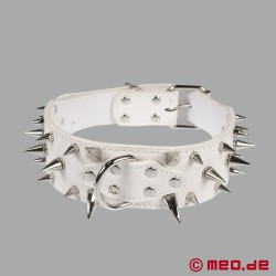 White spiked collar for the human pup