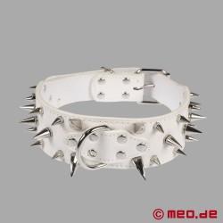 Weißes Stachelhalsband für den Human Pup
