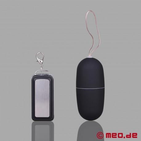 REMOTE SEX - Ferngesteuerter Vibrator