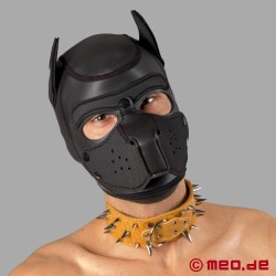 Brown spiked collar for the human pup