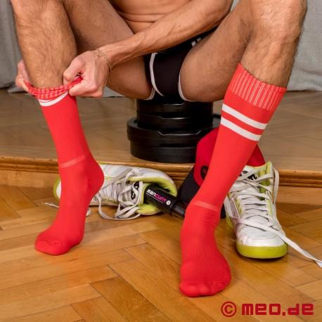 SNEAKER SOX - Chaussettes de foot sexy