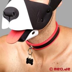 Collare per schiavo - Collare fine da cucciolo in pelle nero/rosso