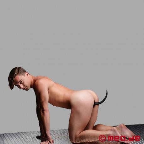 Dog Tail Puppy Buttplug 6 cm Tucker