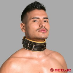Code Z Bondage Collar black/yellow