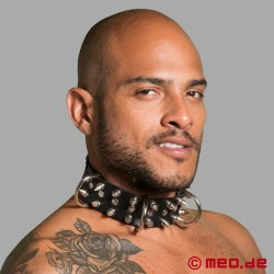Leather slave collar with spikes - Alpha dog