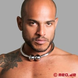 Euphoria Collar with Ball Clasp - Steel Fetish Collar